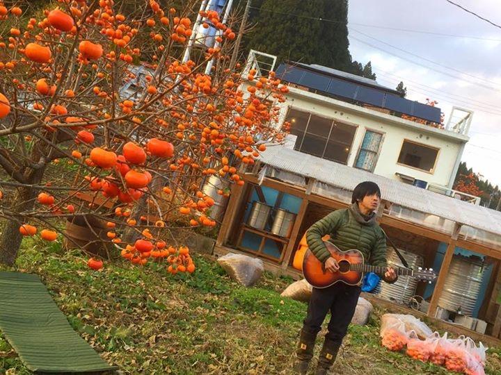 柿のシンガーソングライター2