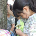 【栃木】1/13(土)始まりの森で生命をいただく七草の歌@アニマnet森カフェ