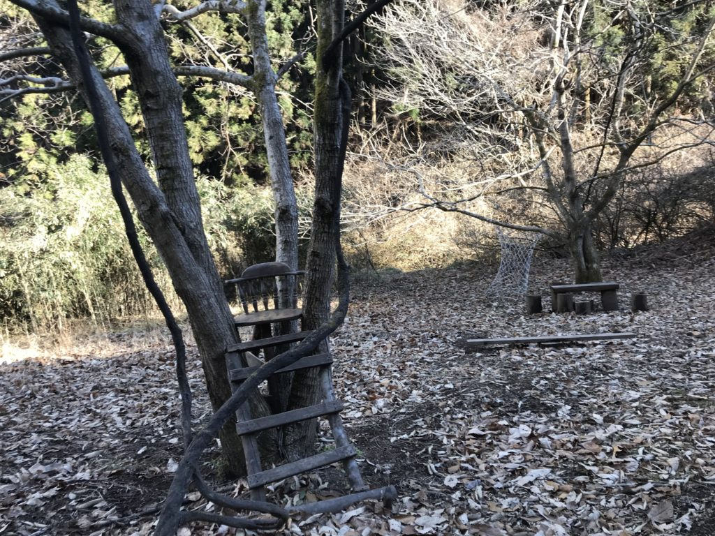 自慢の森。