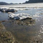 豪雪の爪痕、雪融けの福井県へ。キャンピングカーで森の旅622日目。