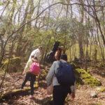 レポート「特別な森に行こう。あなただけのプレゼントソングを作る、癒しの歌トレッキング@由布市ソババッケ」