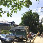 親子で森を楽しむ方法!相生山緑地編。レポ「ごろんコンサート@名古屋市天白区」