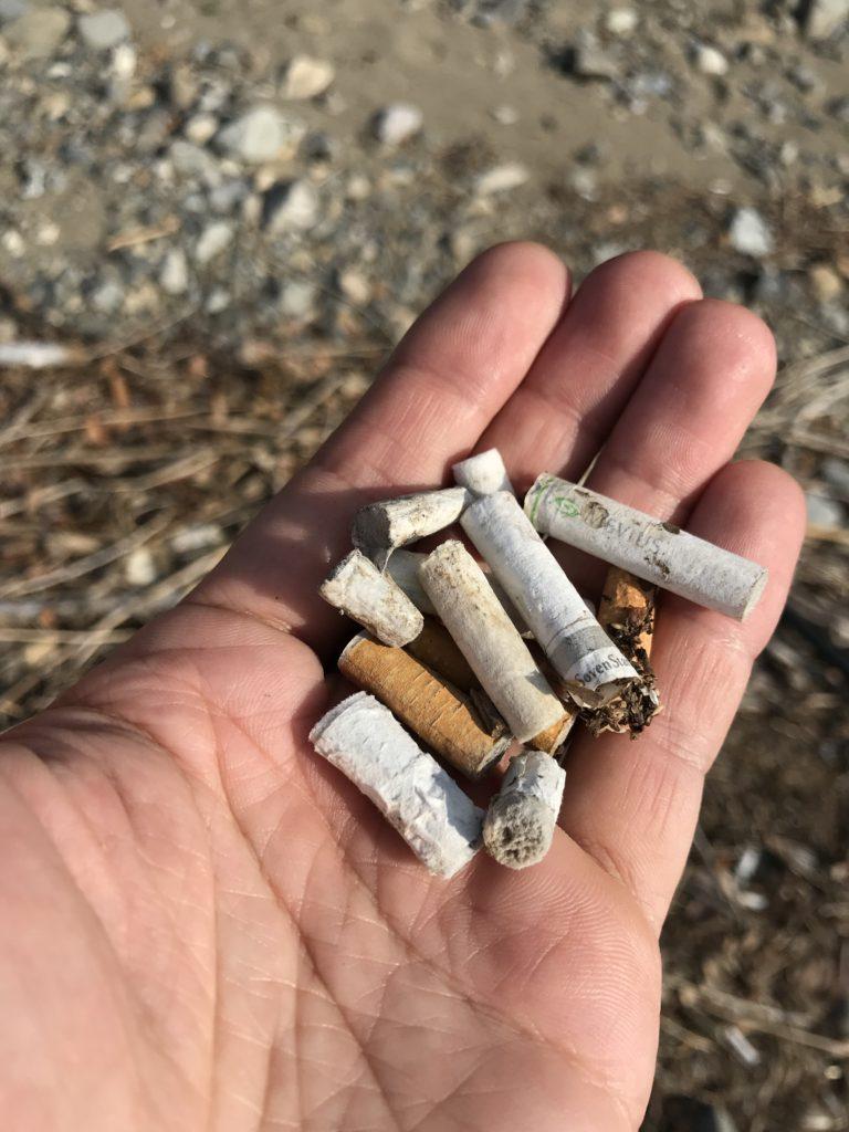 タバコのフィルター。